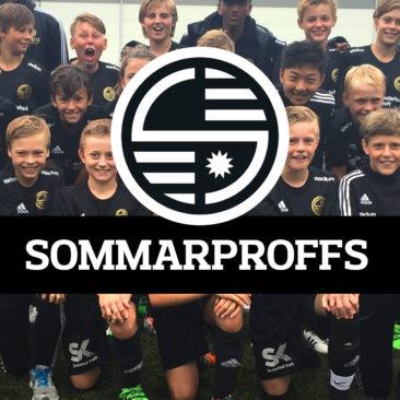 Sommarproffs 2017